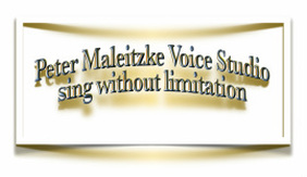 Picture Logo Peter Maleitzke Voice Studio